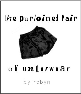 The Purloined Pair of Underwear by Robyn (graphic by Robyn)